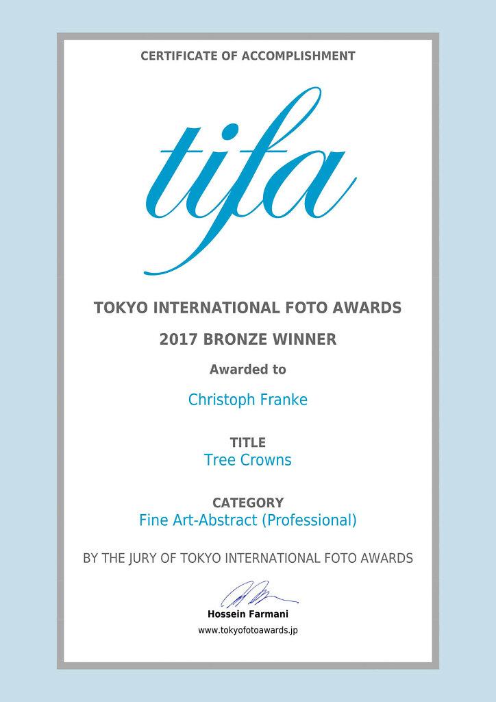 TIFA-Christoph-Franke-bronze.jpg